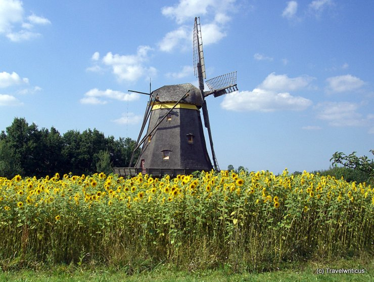Windmill at the Hessenpark in Neu-Anspach, Germany