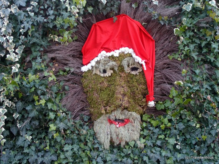 Face of Santa Claus made of moss