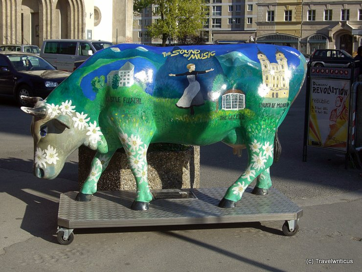 The Sound of Music cow