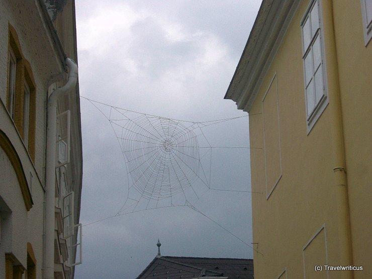 Huge spiderweb in St Pölten, Austria