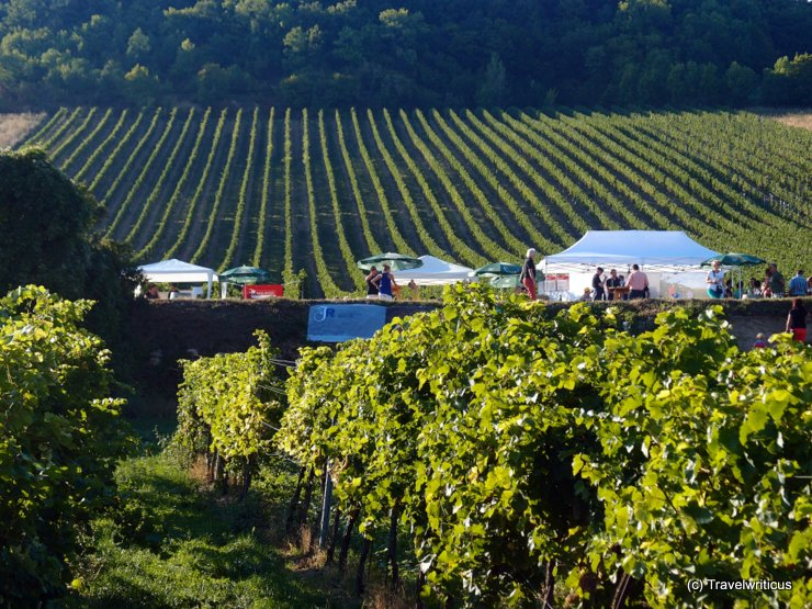 Tents at the Genussmeile south of Vienna, Austria