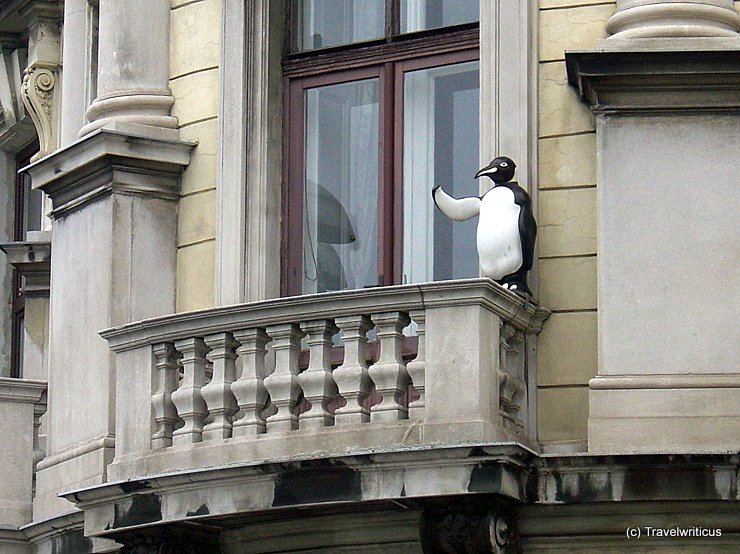 Penguin at a balcony in Vienna, Austria