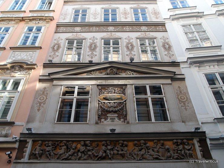 Haus zum blauen Karpfen (Overview)